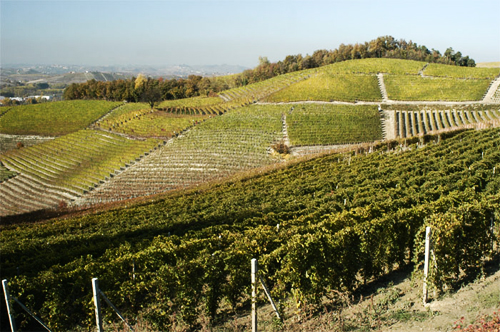 Piemonte-regionen | Passion and more...